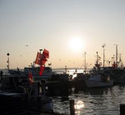 Hafen Fehmarn
