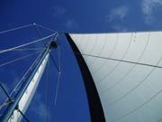 Segelboot Kieler Woche
